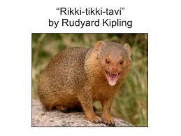 rikki tikki tavi rdquo by rudyard kipling ppt 3 ldquorikki tikki tavirdquo