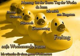 Montag Morgen Sprüche Lustig Kostenlos Downloaden Gb Pics Jappy