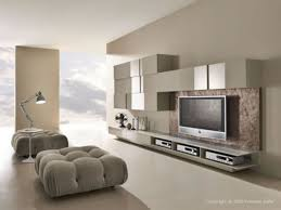 Modern Living Room Accessories Small Modern Living Rooms House Decor Picture