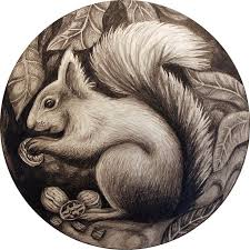 Small Picture 284 best SQUIRRELS SKETCHES images on Pinterest Squirrels