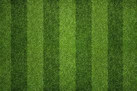 striped soccer field green grass61 green