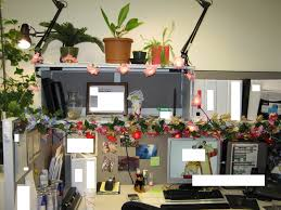plants for office cubicle. Office Space 4 Plants For Cubicle