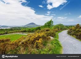 distant view connemara national park