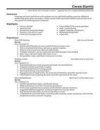 Server Resume Example  Contemporary 1 Design