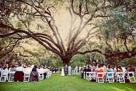 Small Picture wedding under the wedding tree in Eden Gardenslook at the