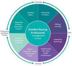 Characteristics of the Nursing Process