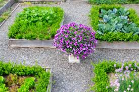 Garden Design Video Kevins Herb Garden Design The Video Kevin Lee Jacobs