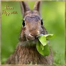 """Résultat de recherche d'images pour """"bon appétit humour gif"""""""