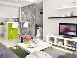 decoration apartment. Apartment Alluring How To Decorate Your Showcasing Tranquil Living Room Between Simplicity Kitchen With L Shape Decoration N