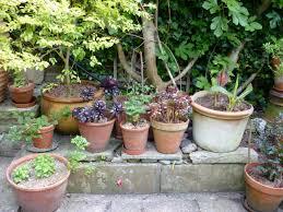 Garden Pots Pots And Planters The Enduring Gardener