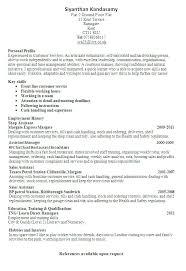 Professional Resume Builders Professional Resume Builder Builders