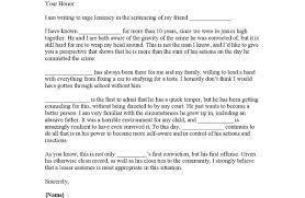Immigration Recommendation Letter Format Koziy Thelinebreaker Co
