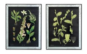 750 00 on botanical wall art set of 2 with two s company botanical wall art prints in mirror frame set of 2