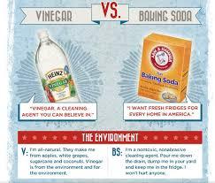 Vinegar vs. Baking Soda - The Debate Is On!!