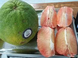 Bột Fruit - Trái Cây & Bánh Kẹo Nhập Khẩu ở Phú Quốc, Phú Quốc | Album ảnh  | Bột Fruit - Trái Cây & Bánh Kẹo Nhập Khẩu