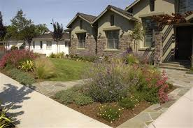 Small Picture Drought Tolerant Landscaping California Drought Tolerant Gallery
