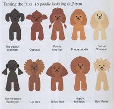 Dog Haircut Chart Huxtable The Poodle Toy Poodle Blog Parti Poodle