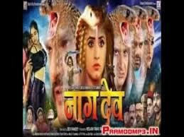nagdev न गद व khesari lal kajal
