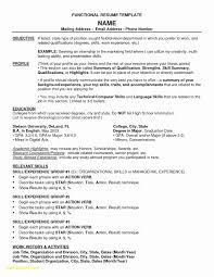 Hybrid Resume Template Inspiration Hybrid Resume Template Chelshartmanme