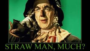 Image result for straw man fallacy definition