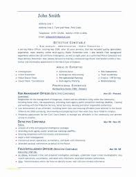Resume Format Free Download In Ms Word And Free Creative Resume