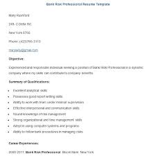 Free Bank Risk Professional Resume Template