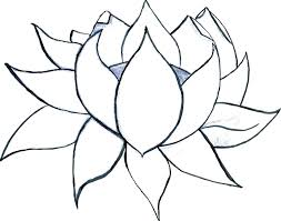 Hibiscus Flower Coloring Pages Coloring Pages For Kids Flowers Free
