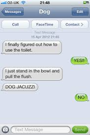 I LOVE this Tumblr. If the Texts from dog guy made a book, I would buy it.  | Funny dog texts, Dog texts, Funny text conversations