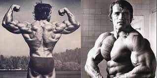 chest and back training try arnold s sut for superior results