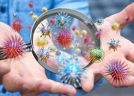 Znalezione obrazy dla zapytania grypa