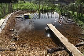 diy natural swimming pool kit new organic plunge pool