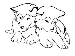 Small Picture husky dog coloring pages 8c5c365f56a11fae3a1e29fa90dcbb43 k