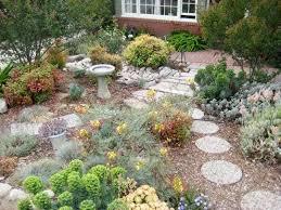 Small Picture 25 best Drought tolerant garden ideas on Pinterest Drought