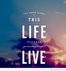 Live Life Quotes New Live Life Quotes