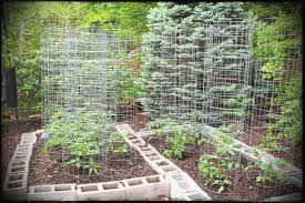 office gardening. Amazing Vegetable Garden Design Ideas Creative With Office Gallery On Marvellous Brown And Green Rectangle Traditional Gardening S