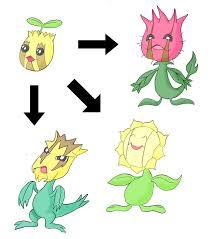 Sunkern Evolution Chart Freesongs4u