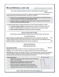 Best Resume Format Examples Examples Of Resumes