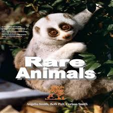 Rare Animals (Bright): smith, angelia, pait, beth, smith, corissa:  9781537738314: Amazon.com: Books