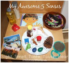 5 senses gift ideas for sight 28 well suited activity pre learning about science