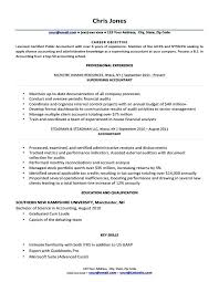 Finance Objective Resume Black And White Wolverine Finance Resume