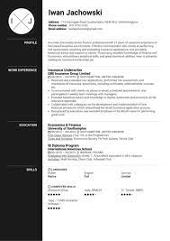 Insurance underwriters evaluate applicants for insurance. Insurance Underwriter Resume Sample Kickresume