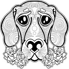 Animal Coloring Pages Adult Dog Cat And Books Book Different