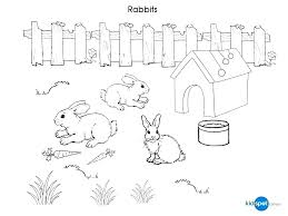 Peter Rabbit Coloring Pages Printable Rabbit Coloring Pages Rabbit
