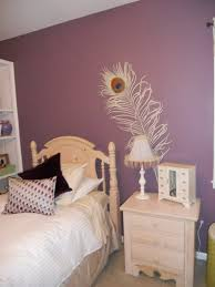 Light Paint Colors For Bedrooms Small Bedroom Color Schemes Pictures Options Ideas With Wall