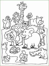 7 Wildlife Kleurplaat 83613 Kayra Examples
