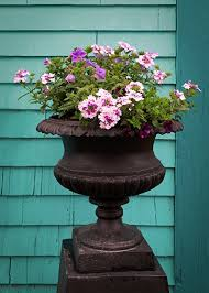 container flower garden ideas for