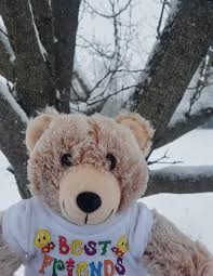 Cocoa the Friendship Bear - Posts   Facebook