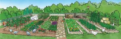 Small Picture Sustainable Food Garden Design 82 Sustainable Gardening Tips