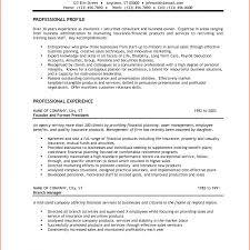 Entrepreneur Job Description For Resume Charming Idea Small Business Owner Resume Similar Resumes Samples 36