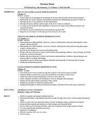 11 Visual Merchandising Resume Job Apply Form Samples Sample 14